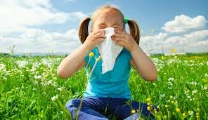 Resultado de imagen para virus de verano